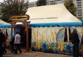 павильон пагода г. Калинковичи